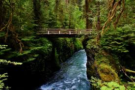 Olympic National Park Map Your Guide To The 15 Campgrounds Of Olympic National Park The