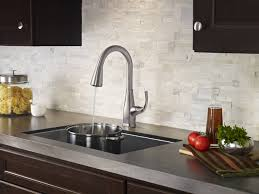 Faucets Pfister Stainless Steel Selia 1 Handle Pull Down Kitchen Faucet F 529