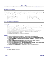 Resume Summary Examples Sales Awesome Example Of Summary For Resume Contemporary Simple Resume