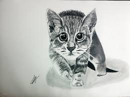 imágenes de gatos fáciles para dibujar cómo dibujar un gato realista paso a paso explicado muy fácil youtube