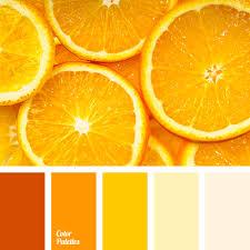 bright orange bright shades of orange color of orange dark