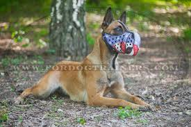 belgian sheepdog of america american pride handpainted leather belgian malinois muzzle