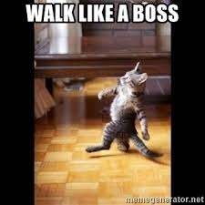 Like A Boss Meme - walk like you da boss wal like a boss meme generator