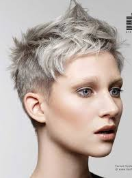 funky hairstyle for silver hair 290 best platinum and grey images on pinterest grey hair going