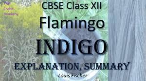 indigo class 12 english flamingo ncert book explanation