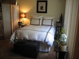 Cheap Bedroom Decorating Ideas Interesting 30 Apartment Bedroom Decorating Ideas On A Budget
