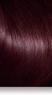 Colour Shades Best 25 Brown Hair Color Shades Ideas On Pinterest Chocolate