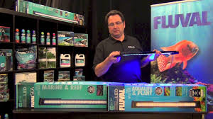 fluval led light 48 fluval performance led lighting overview youtube