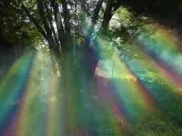 willow tree rainbow by mrl33t on deviantart