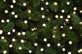 premier decorations pearl lights multi 200 led warm white