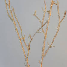 Decorative Branches For Vases Uk Twigs And Sticks
