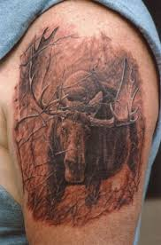 wildlife tattoo for shoulder photos pictures and sketches