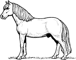 three horses coloring pages coloringstar
