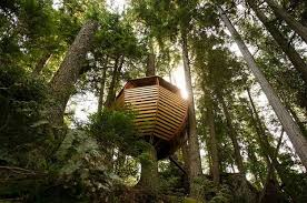 suspended tree house blending salvaged wood materials and organic