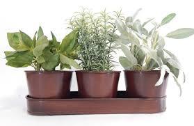 metal herb kits urban farmer