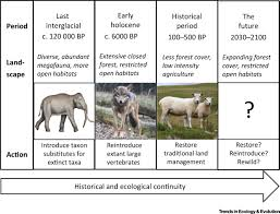 restoration reintroduction and rewilding in a changing world