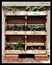 diy vertical herb garden build a herb garden 25 unique herb garden pallet ideas on pinterest