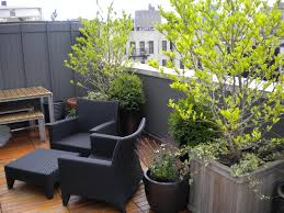 Gardening Ideas For Small Balcony by Simple Organic Rooftop Garden Playuna