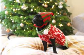 zoella nalas christmas photoshoot