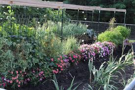 learn to grow a straw bale garden home facebook