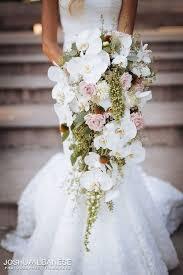 wedding flowers orchids best 25 orchid bouquet ideas on white orchid bouquet