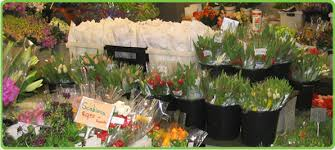 wholesale flowers near me flower company florist flowers in tx