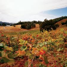 places to visit in thanksgiving great fall trips in california sunset
