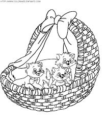 28 dessins de coloriage chaton à imprimer