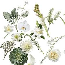 wedding flowers types a glossary of wedding flowers by color brides
