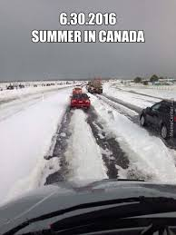 Canada Day Meme - canada day 2017 all the memes you need to see buuzunites