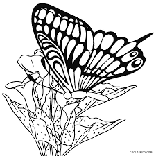 difficult butterfly coloring pages for adults kids aim images page