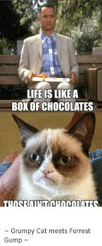Forrest Gump Memes - life islikea boxofchocolates those aintchocolates botcom botl