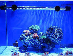 Reef Aquarium Lighting Best Aquarium Light In November 2017 Aquarium Light Reviews