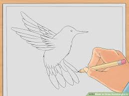 draw hummingbirds 7 steps pictures wikihow