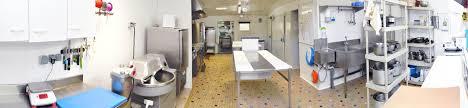 cuisine traiteur cuisine traiteur top photo laboratoire traiteur image with cuisine