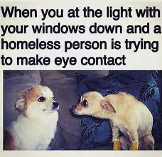 Eye Contact Meme - dog memes the feeling is right there loldamn com