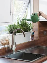 Indoor Trees For The Home by How To Plant A Kitchen Herb Garden Hgtv
