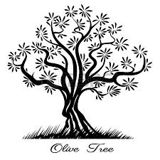 olive tree silhouette sketch wood painted black lines vector