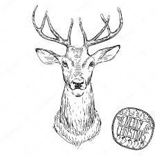 deer head vector animal illustration for t shirt sketch tattoo