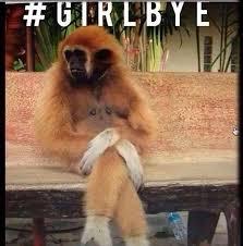 Girl Bye Meme - monkey said girl bye social tweeb