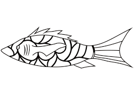 coral reef fish coloring free printable coloring pages