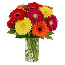 gerbera bouquet united states gerbera flowers gifts bouquet in usd
