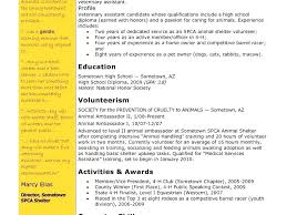 Resume For It Support Office Applications 4 Resume Desktop Support Free Resume Example