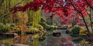 Georgia Botanical Garden by Three North Metro Atlanta Botanical Gardens To Visit This Fall