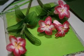 صناعة الورود من الجوارب الشفافة Images?q=tbn:ANd9GcTTqlu1Fqy_DW7VJYy2znfUv5yTtLlz5YppFeGFj8VdHsHz4QZp&t=1