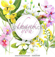 floral thank you card stock images royalty free images vectors