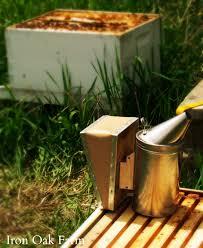understanding your smoker keeping backyard bees