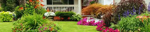 spring landscaping landscaping spring house pa lawn services spring house pa