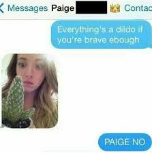 Paige Meme - rip paige meme by ecksdi004 memedroid