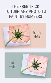 is paint any the free trick for how to turn a photo into paint by numbers